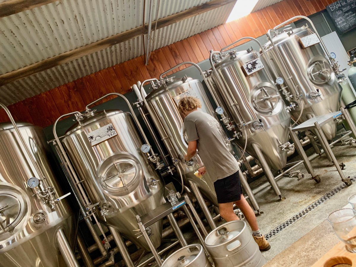 tweed valley brewery tours, brewery tours gold coast byron bay
